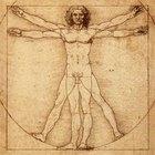 Principales características del Renacimiento