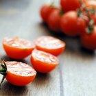 20 maneras de cocinar tomates