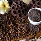 20 usos alternativos del café
