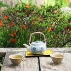 Dez benefícios do chá Ti Kuan Yin