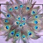 Haz tus propios salvamentales con plumas de pavo real