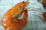 Where Can Shrimp Be Found in the Ocean?