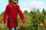 Kids' Activities Near Libertyville, Illinois