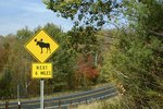Horseback Riding Vacations in Lake George, New York