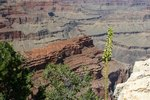 Lodging on the North Rim of Grand Canyon National Park