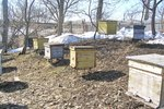 How to Build Bee Hives & Foundation Frames