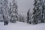 Skiing Trails at Heavenly Ski Resort in California