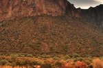 Things to See in Tucson, Arizona
