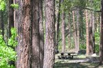 Campgrounds in Hot Springs, AR