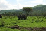 About African Safaris