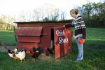 How to Convert a Rabbit Hutch to a Chicken Coop