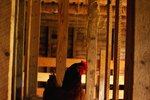 How to Winterize a Chicken Coop
