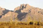 Things to Do in Pinal County, AZ