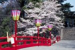 Most Important Festivals of Japan