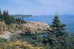 Ways to Volunteer in Acadia National Park