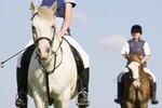 Horseback Riding Camps in Toronto, Ontario