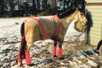 How to Make a New Strap for a Horse Blanket