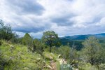Places to Get Married in the Gila Mountains of New Mexico
