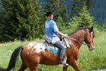Exercises for Engaging a Horse's Hind Legs