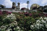 What Type of Flowers Grow in Italy?
