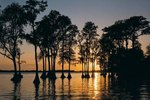 Fishing Trips in the Tampa Bay Area