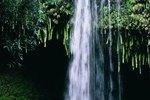 Maui Waterfall Weddings