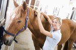 How to Fix a Horse's Split Mane