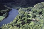 Secluded Lodging on the River in Kauai, Hawaii