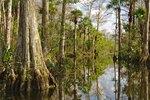 What Is a Good Place to Stay for Visitors to the Everglades?