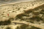 Beaches Near Wilmington, NC