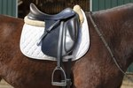 How to Measure English Saddles