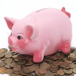 Savings accounts allow you to earn better interest than a checking account.