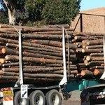Semi-trucks hauling heavy trailer loads require a Class A license.