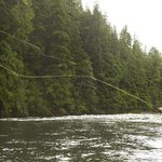 Man fly-fishing in British Columbian river