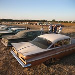 Classic cars for sale at outdoor auction