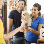 Pet groomers who work for a company usually receive a salary and benefits.