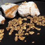 Gold nuggets on display, Jamestown, CA.
