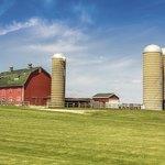 A barn and silos on farmland.