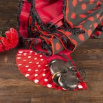 Castanets with a flamenco costume.