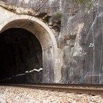 Railroad track going into tunnel