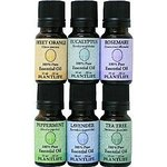 Essential Oils Sampler