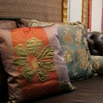 Decorative pillows cost little and add zest.