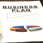 Create a business plan and decide on the company's goals.