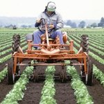 A farmer in a tractor with a plow makes rows.