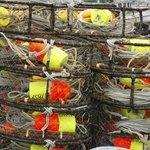 Crab pots on dock in Alaska