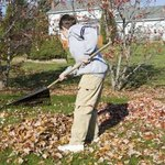 Raking leaves is another way to earn money.