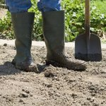 A person wearing rubber boots holds a shovel.
