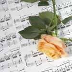 Rose on sheet music with song lyrics.