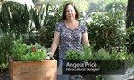 Grow Herb Garden | How to Grow an Herb Garden