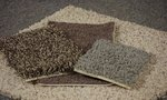 Change | When to Change to New Carpet for Tenants